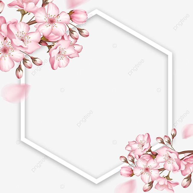 spring polygonal pink flower sakura border