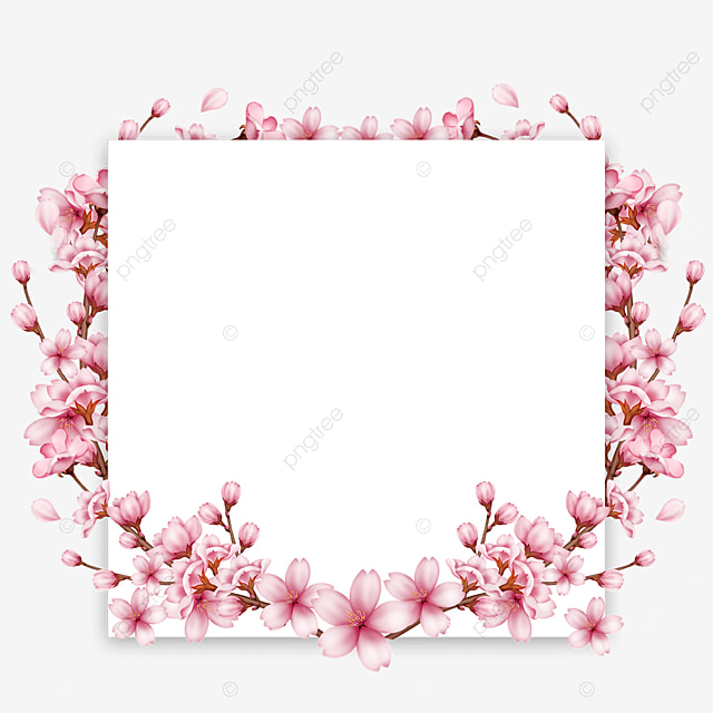 square branch bud spring cherry blossom border