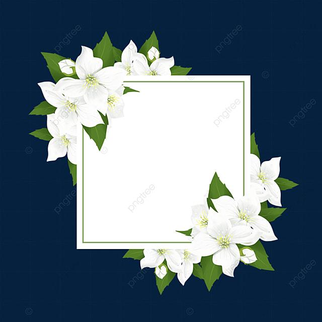 square jasmine flower border