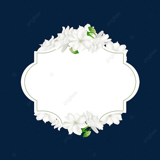white jasmine flower border
