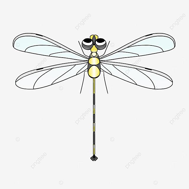 yellow black dragonfly clip art