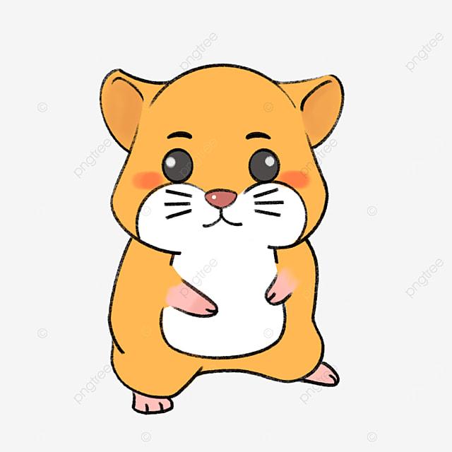 yellow golden bear hamster clip art