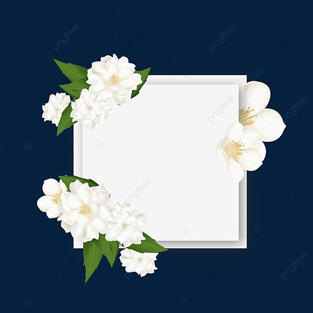 warm jasmine flower border