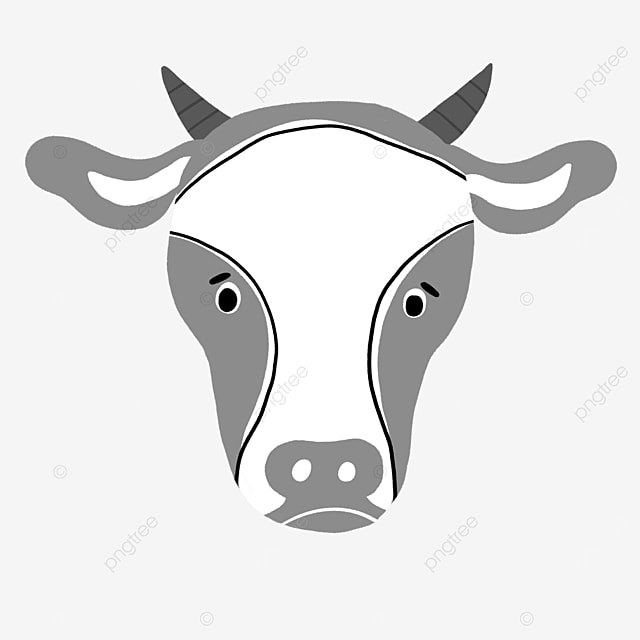 gray realistic cow face clip art