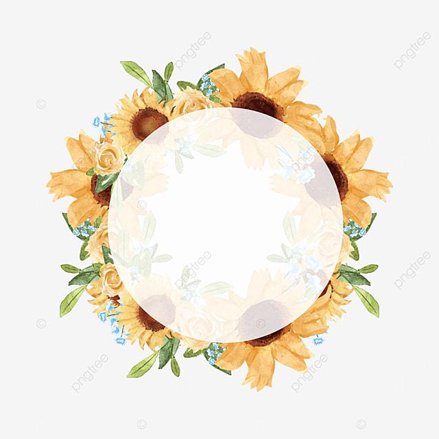 floral border round transparent sunflower