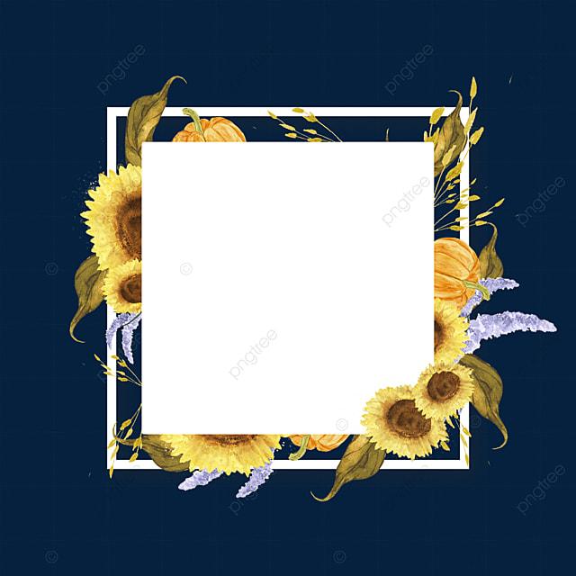 floral square sunflower border