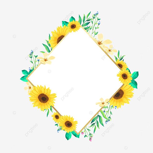 rhombus sunflower flower border