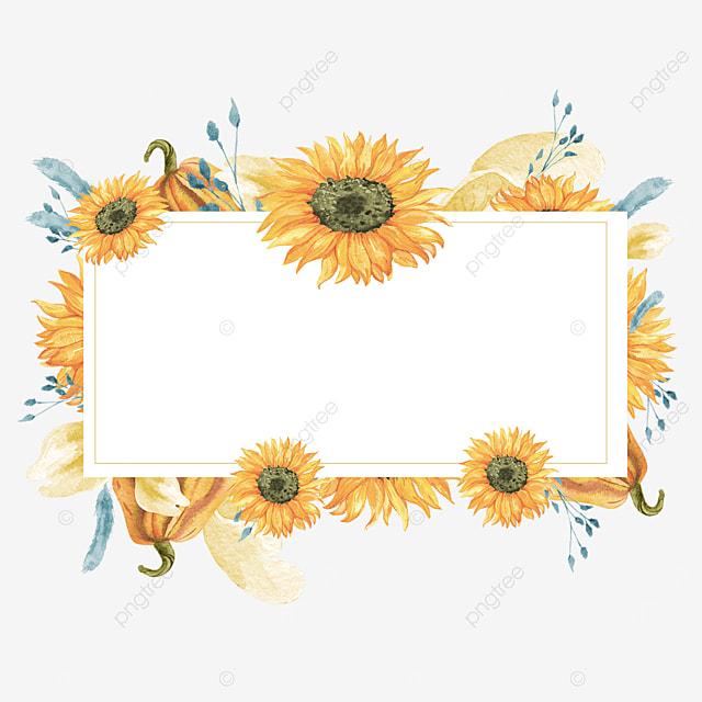 sunflower border rectangle
