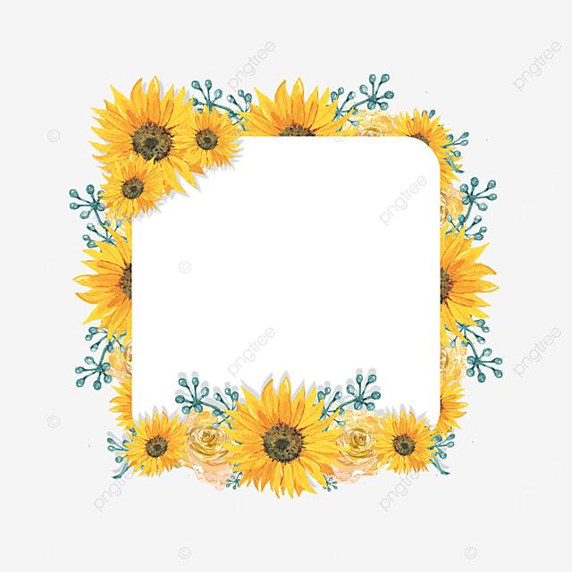 sunflower flower border square