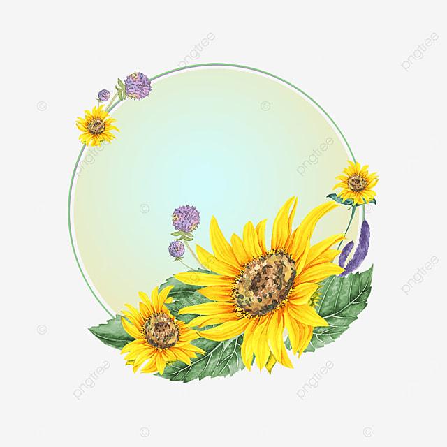 sunflower flower gradient border
