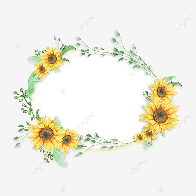 yellow sunflower green plant border