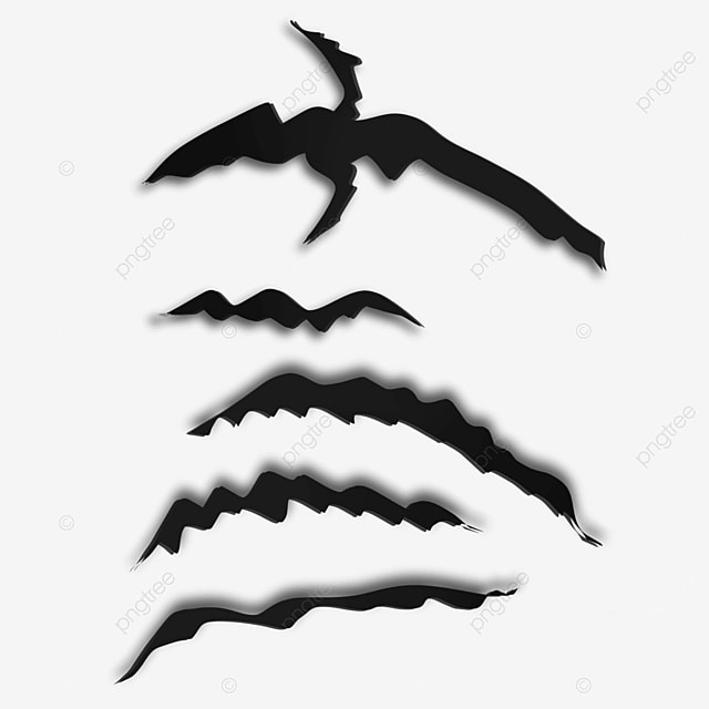 black animal claw marks destruction