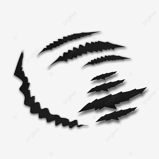 black dangerous animal claw marks