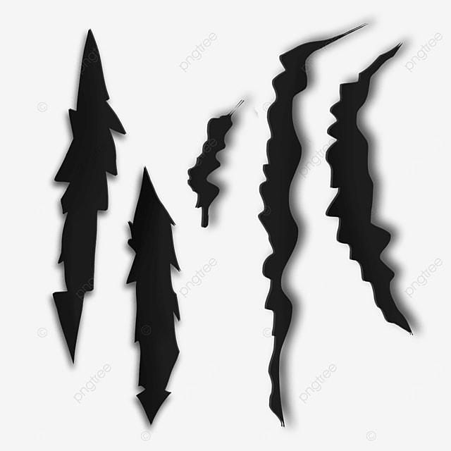 black wild animal claw marks