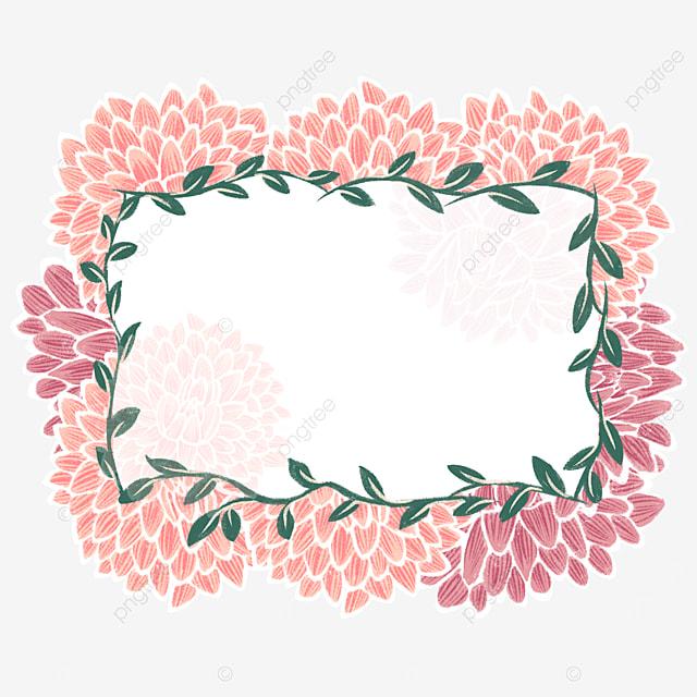 dahlia background pink border