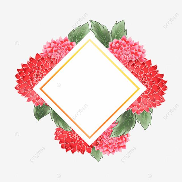 dahlia flower golden border