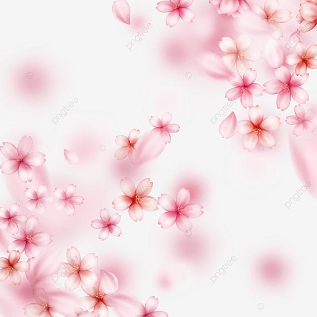 dynamic falling pink light effect cherry blossom border