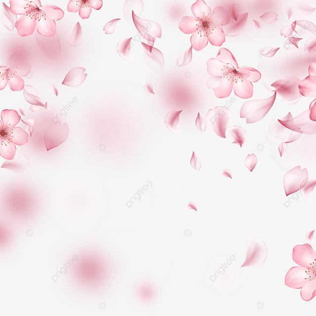 dynamic pink falling light effect cherry blossom border