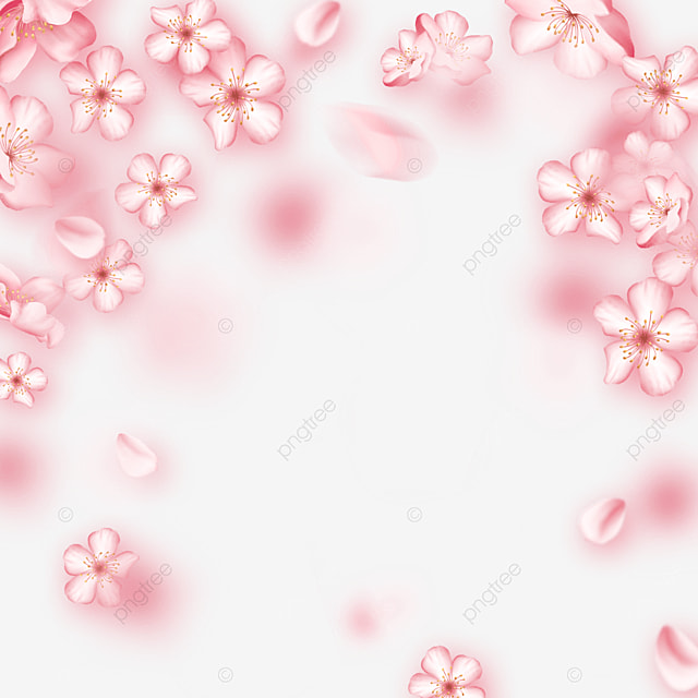 pink beautiful dynamic light effect cherry blossom border