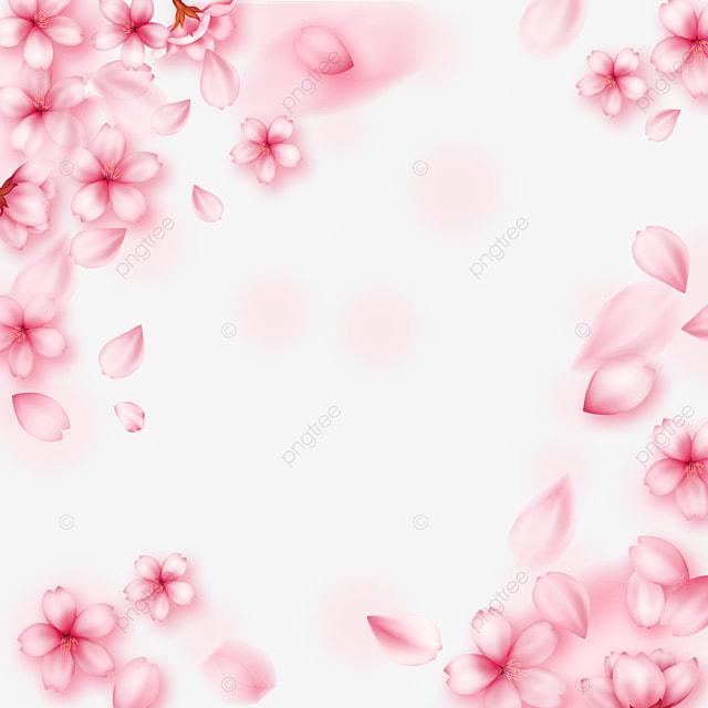 pink dynamic light effect cherry blossom border