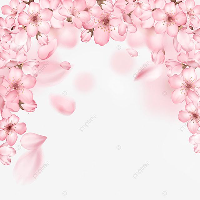 pink light effect romantic blooming cherry blossom border