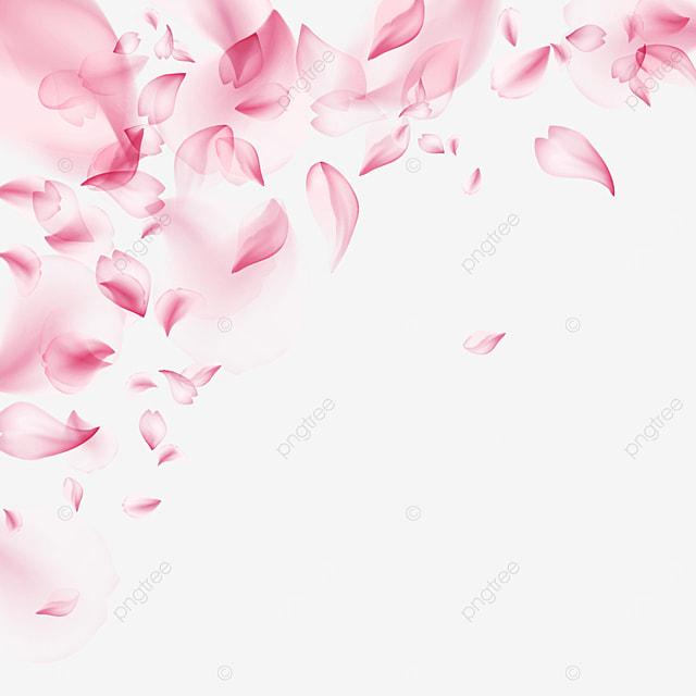 pink transparent romantic petals light effect cherry blossom border