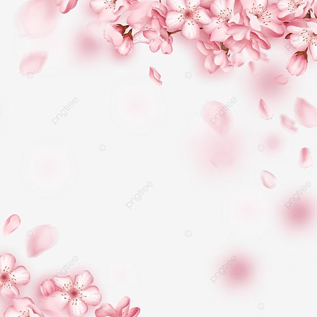 romantic spring beautiful light effect cherry blossom border