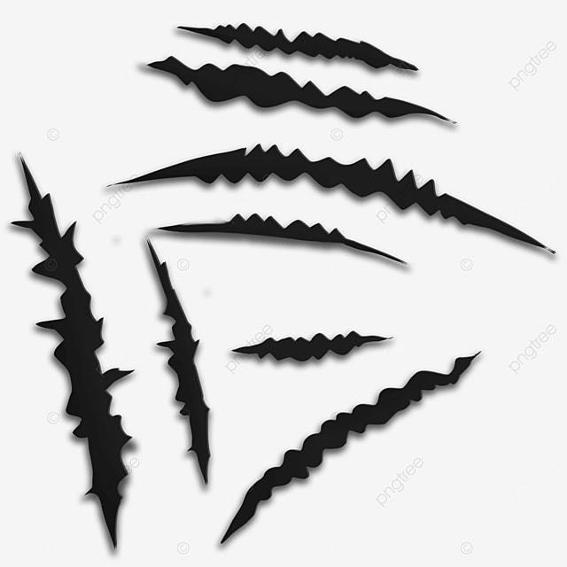 wild animal claw marks black