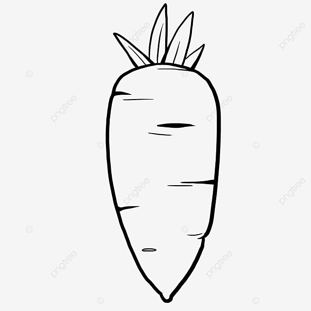 bold carrot black and white clipart