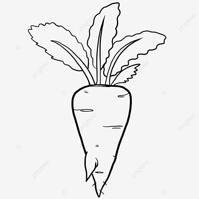 chic carrot black and white clipart