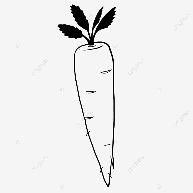 exquisite carrot black and white clipart