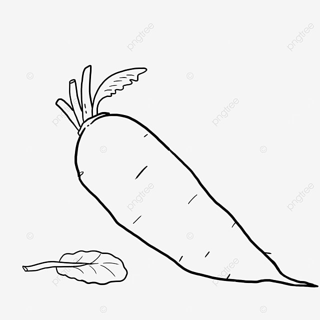 natural carrot black and white clipart