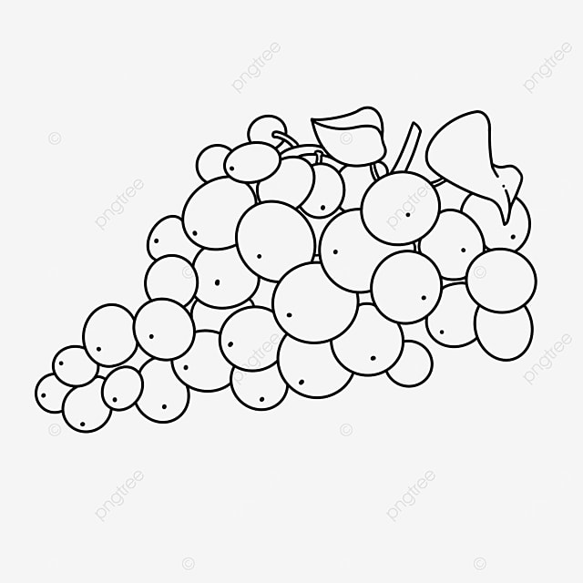 stem and leaf grape clipart black and white
