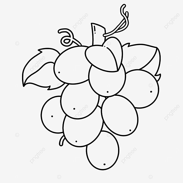 sweet and sour grapes clipart black and white