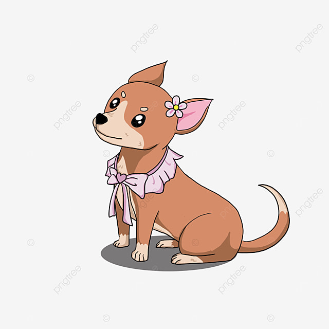 chihuahua wearing a bow clipart