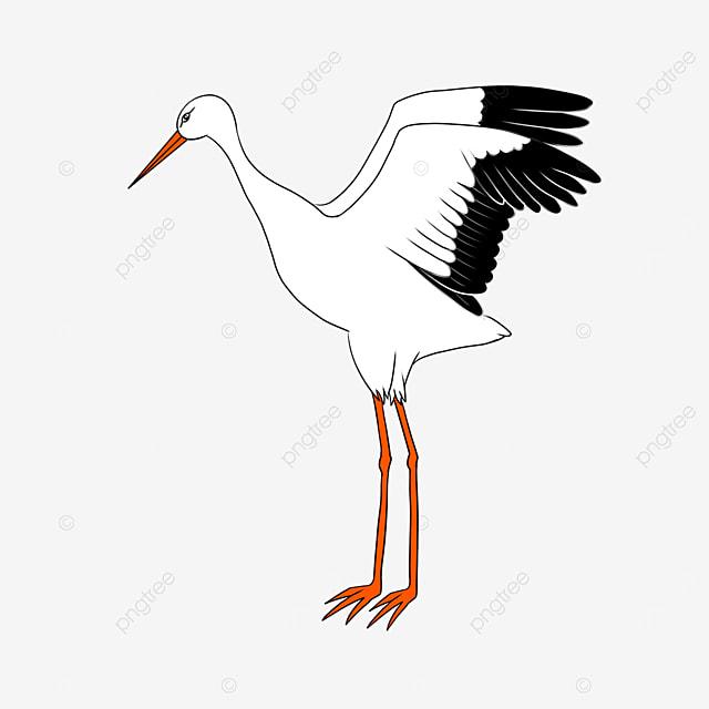 elegant and smart white stork clip art