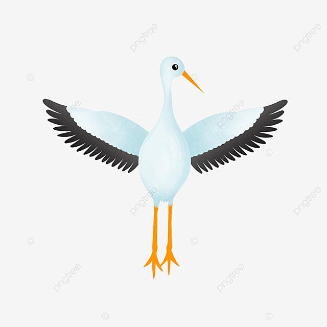 elegant white stork clip art