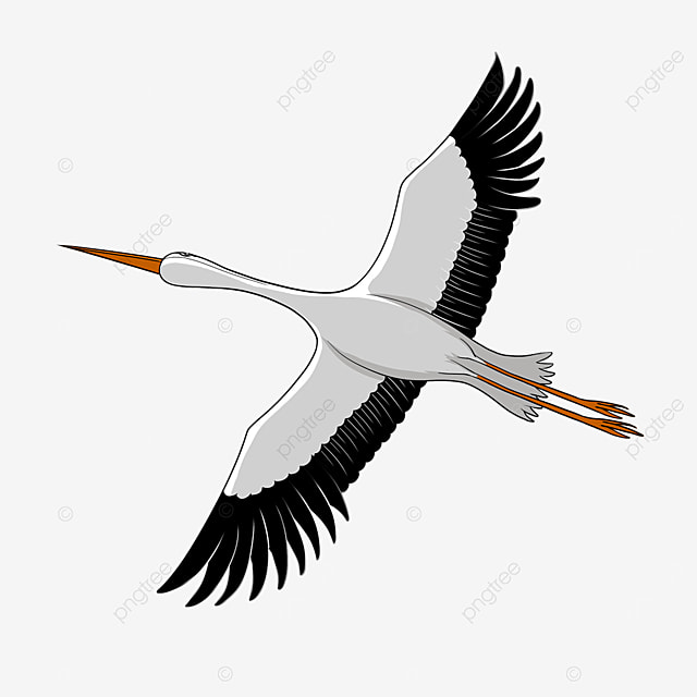 flying white stork clipart