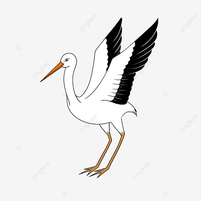 proud beautiful white stork clipart