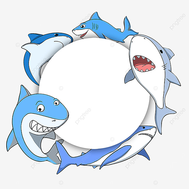 shark marine life border