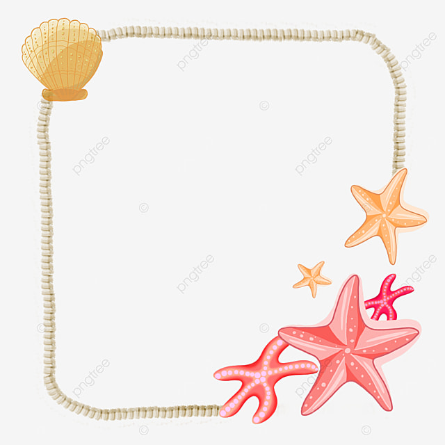 shell simple marine life border