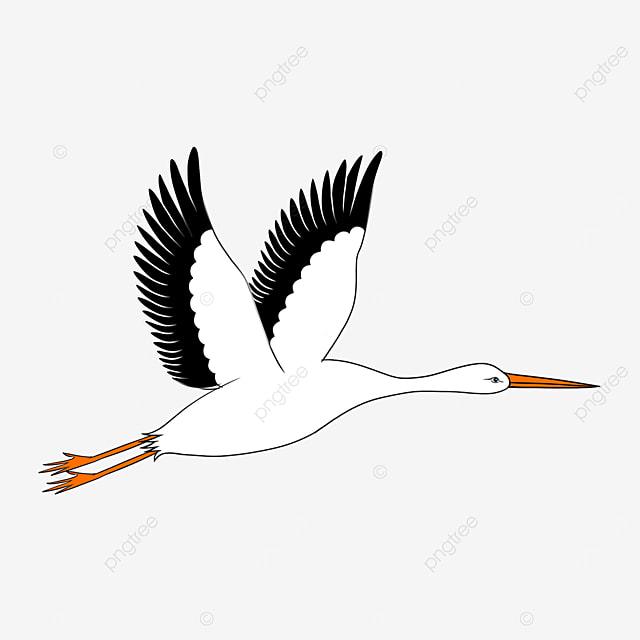smart goofy white stork clip art