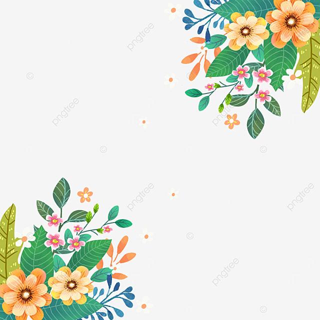 spring blooming wildflowers flowers