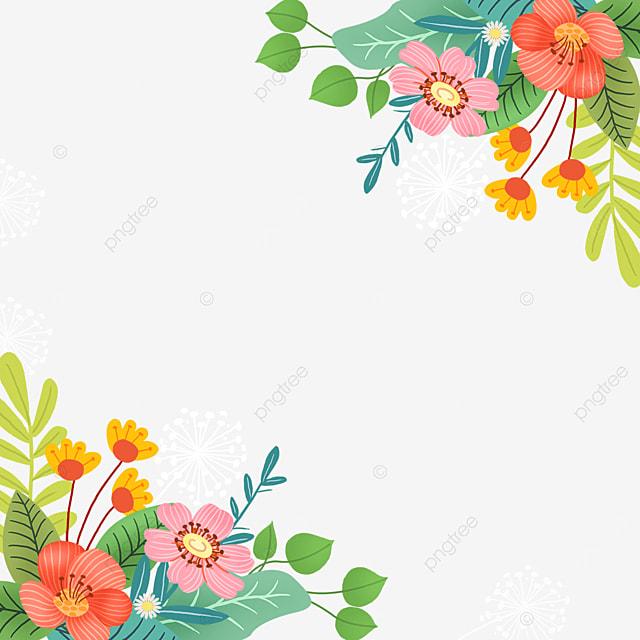 spring flowers wildflowers flower