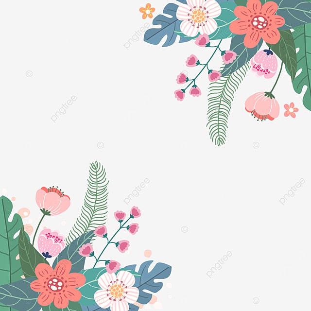 spring plants flowers flowers