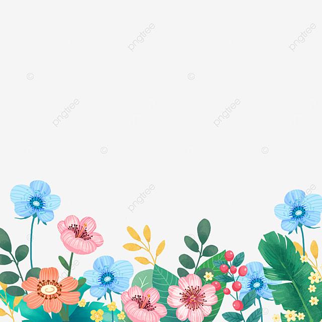 spring wildflowers plants flowers