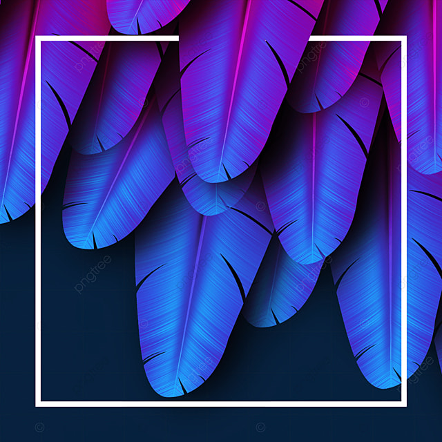 blue feather texture border