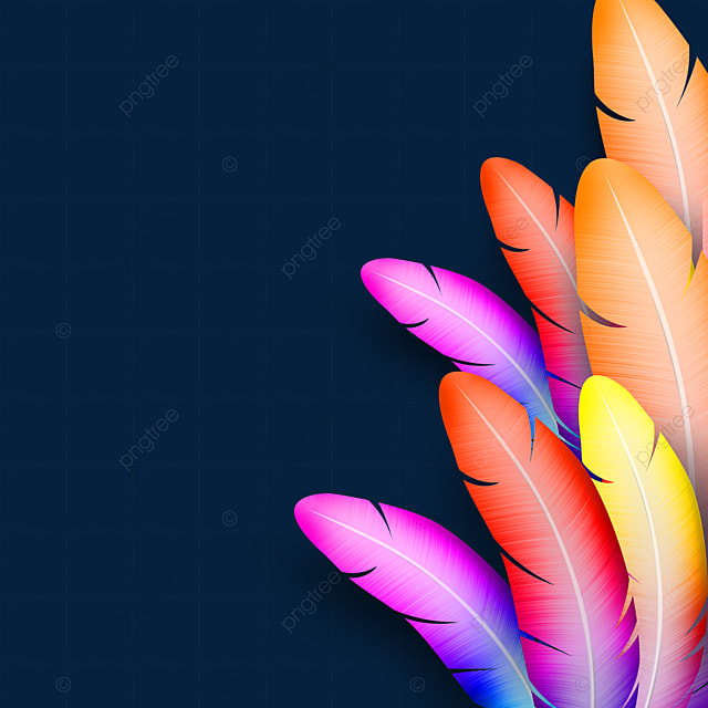 colorful feather texture border