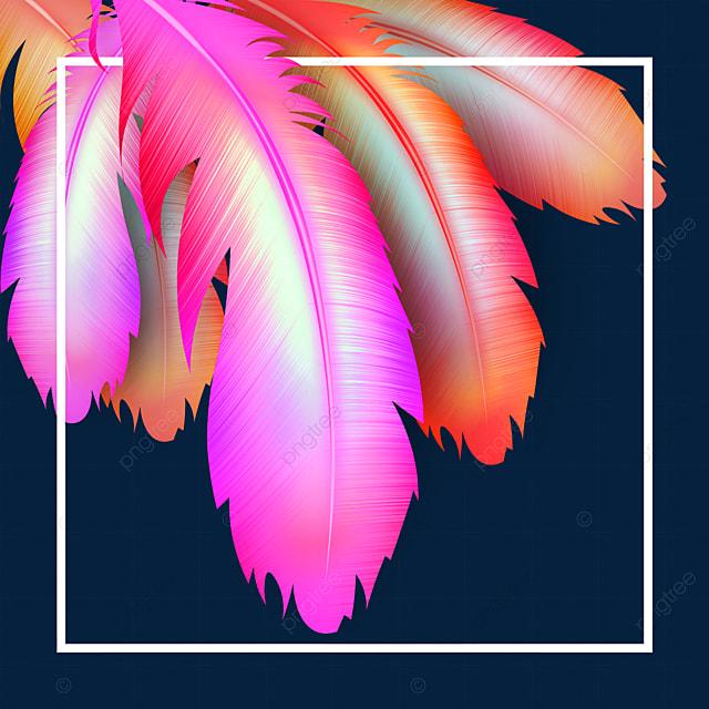 gorgeous feather texture border