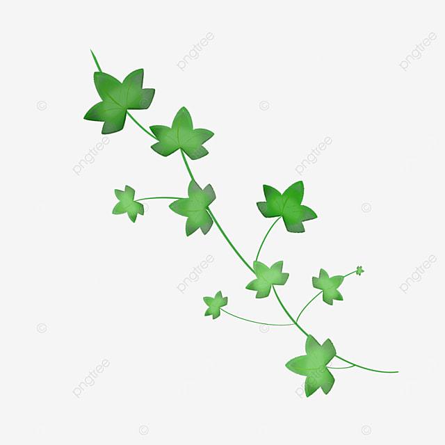 green ivy clip art